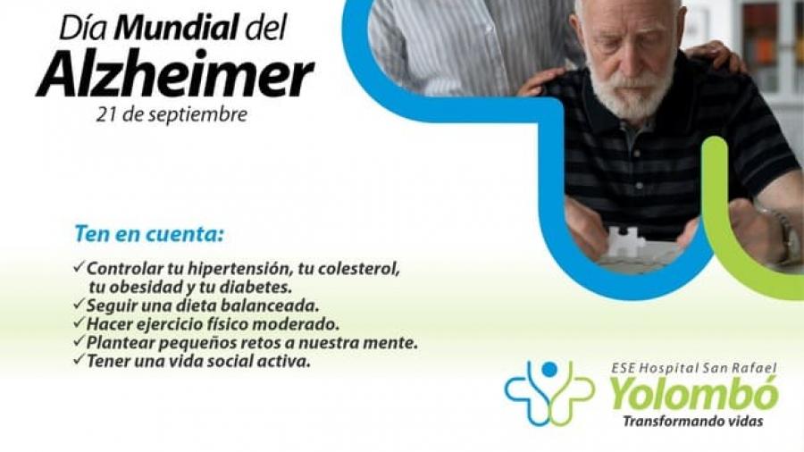 Alzheimer Web