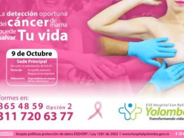 Deteccion cancer de mama v4-min